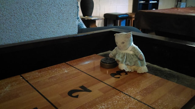 mrs cat on a shuffleboard table